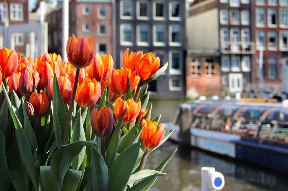 Paket Tour Eropa Barat Wisata Muslim Maret 13 Hari 12 Malam / Musim Semi (Spring) 2021
